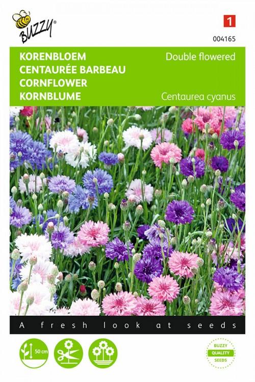 Dubbelbloemig Centaurea Korenbloem zaden