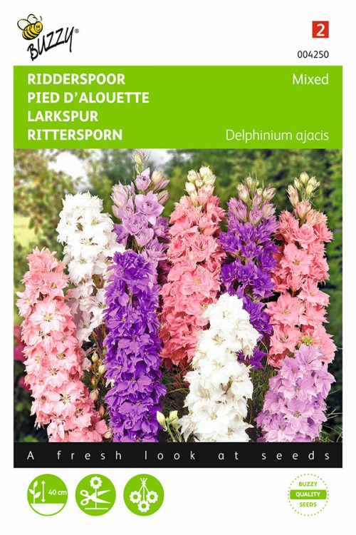 Dwarf Hyacinth Consolida ajacis - Larkspur seeds