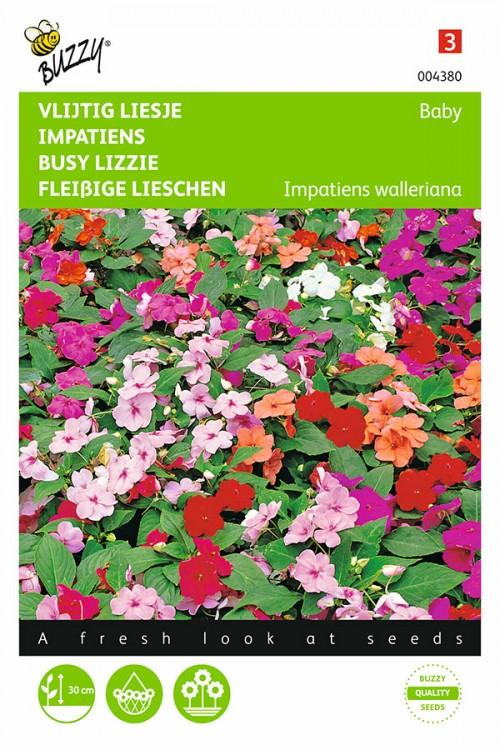 Baby sultanii Busy Lizzie Impatiens seeds