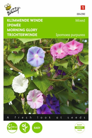 Mixed Morning Glory Ipomoea...