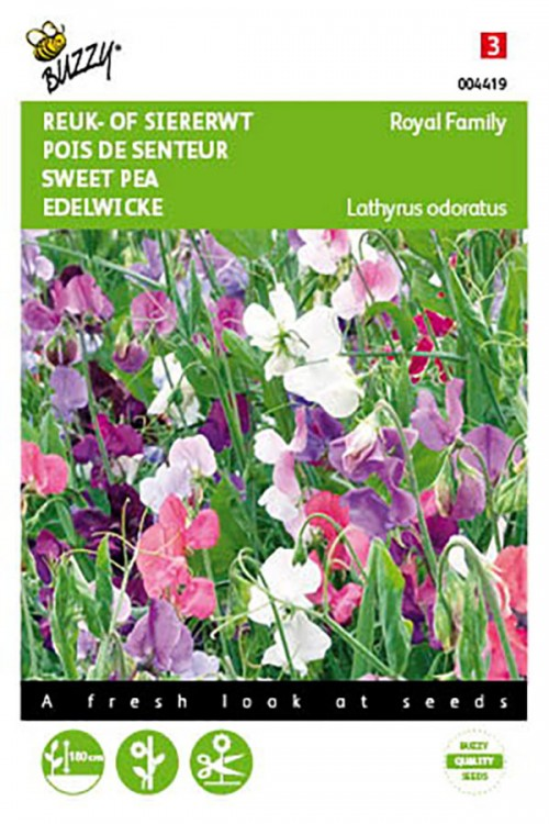 Royal Family mixed Sweet pea Lathyrus seeds