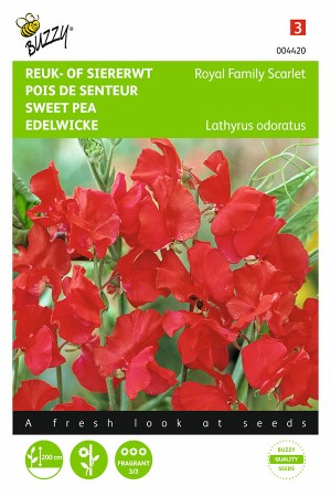 Royal Family Red Sweet pea...