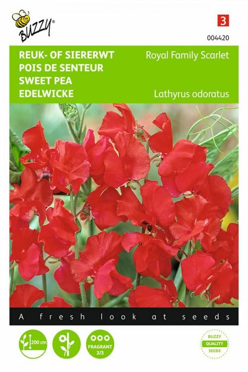 Royal Family Rode Siererwt Lathyrus zaden