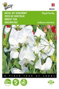 Royal Family White Sweet pea Lathyrus seeds