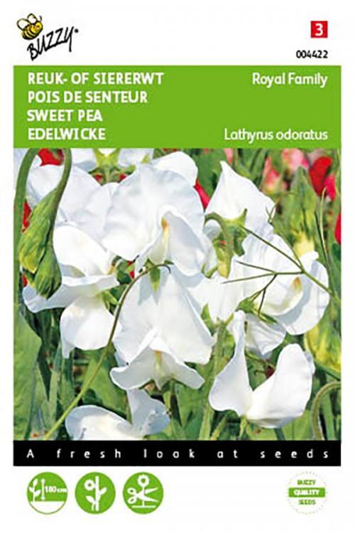 Royal Family Witte Siererwt Lathyrus zaden