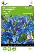 Royal Family Blauwe Siererwt Lathyrus zaden