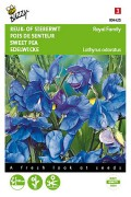 Royal Family Blue Sweet pea Lathyrus seeds