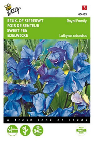 Royal Family Blue Sweet pea...