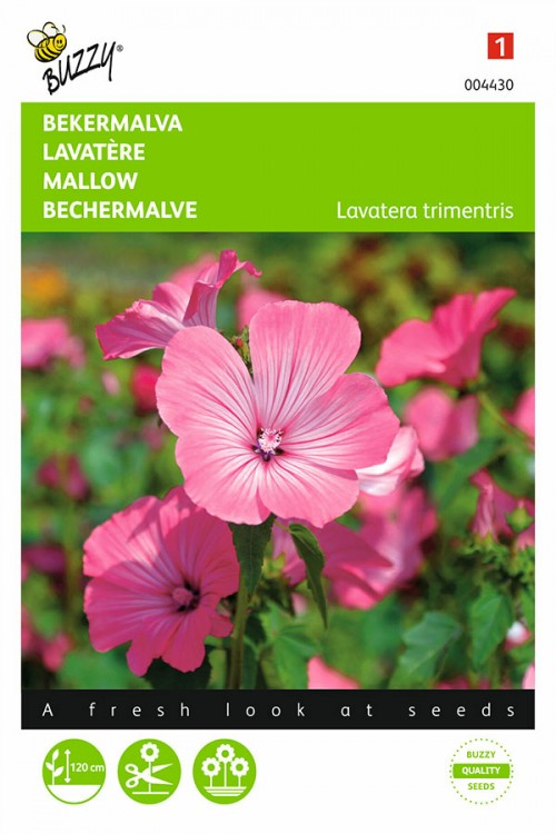 Pink-Red Royal Mallow seeds