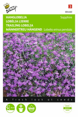 Sapphire Trailing Lobelia...
