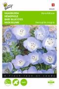 Heaven Blue - baby-blue-eyes