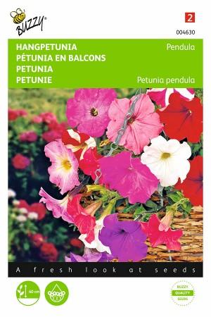 Pendula Petunia seeds