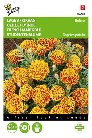Bolero French Marigold...