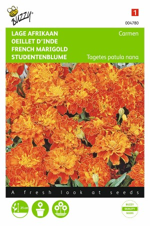 Carmen French Marigold Tagetes seeds