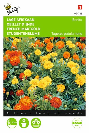 Bonita French Marigold...