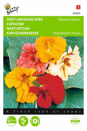 Glorious Gleam Nasturtium...