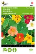 Tom Thumb Nasturtium seeds