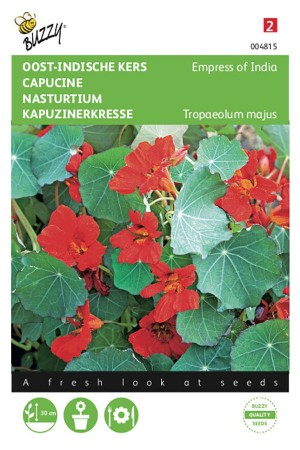 Empress of India Nasturtium...