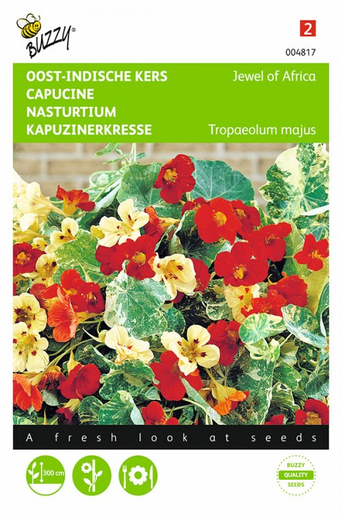 Jewel of Africa Nasturtium seeds