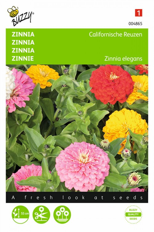 Giants of California Zinnia seeds