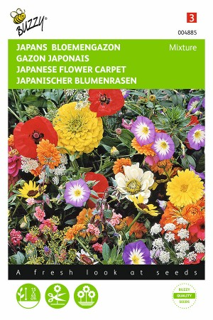 Japanese flower carpet seeds