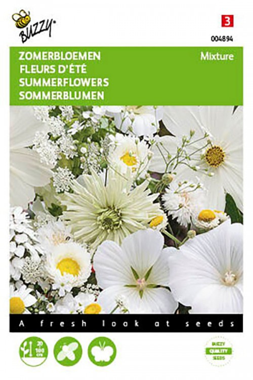White Summer flowers seeds