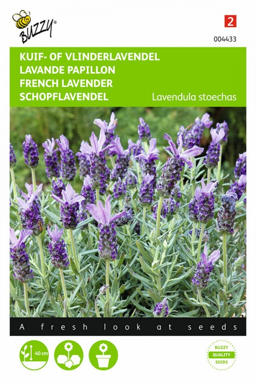 French Lavender - Topped Lavender seeds