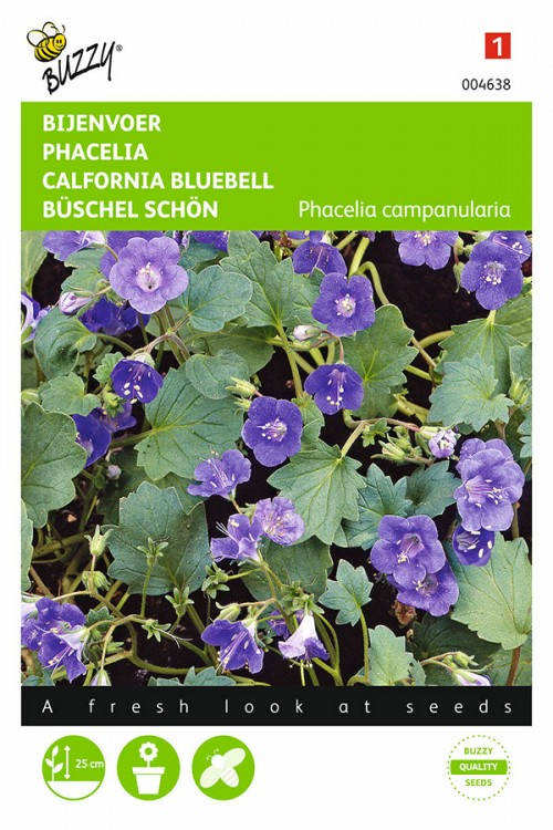 Phacelia Campanularia - Bijenvoer zaden