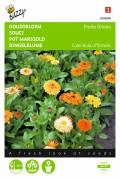 Fiesta Gitana Marigold Calendula seeds
