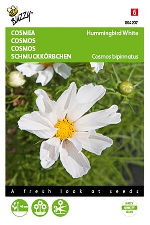 Hummingbird white Cosmos seeds