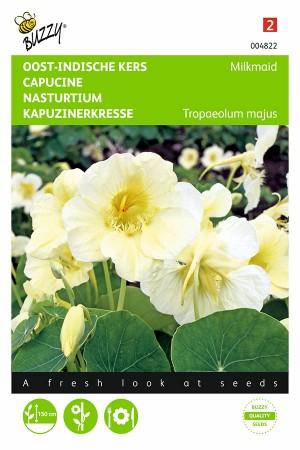 Milkmaid Nasturtium seeds