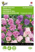 Double flowered Canterbury Bell seeds
