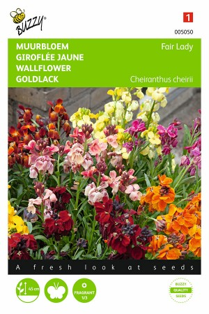 Fair Lady Mix - Wall flower seeds