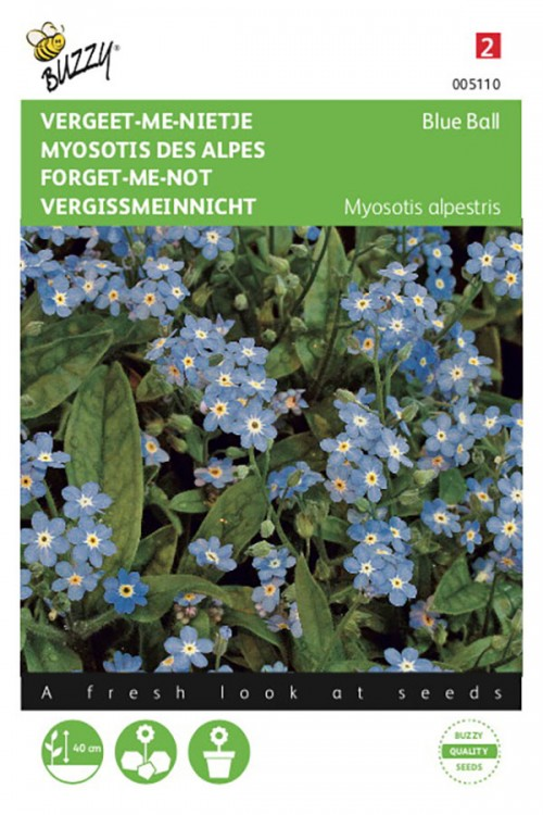 Blue Ball - Forget-me-not seeds