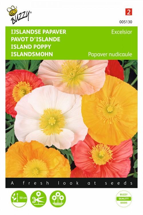 Excelsior Island Poppy - Papaver nudicaule seeds