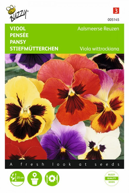 Aalsmeer Giants - Pansy seeds