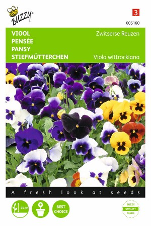 Swiss Giants - Pansy seeds