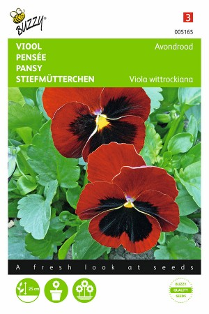 Scarlet red blotch - Pansy...