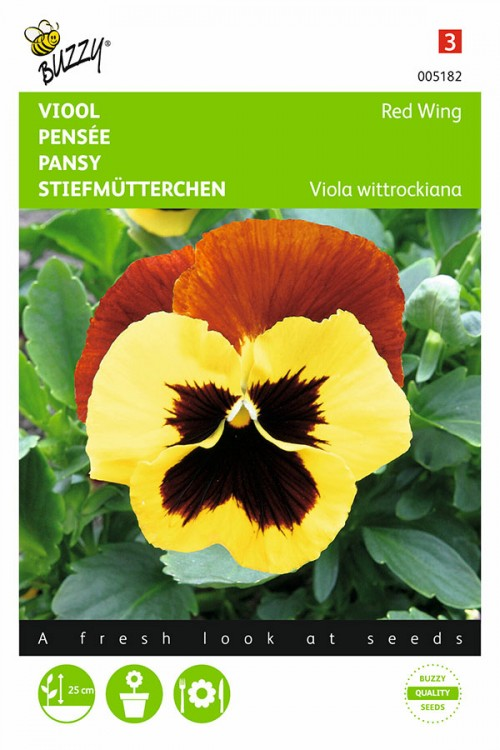 Red Wing - Pansy seeds