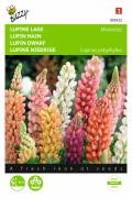 Minarette - Lupine seeds
