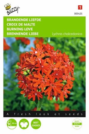 Brandende Liefde zaden