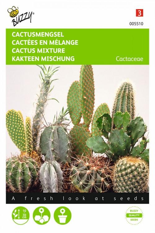 Cacti mix - Cactus seeds