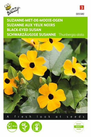 Yellow Black-Eyed-Susan seeds