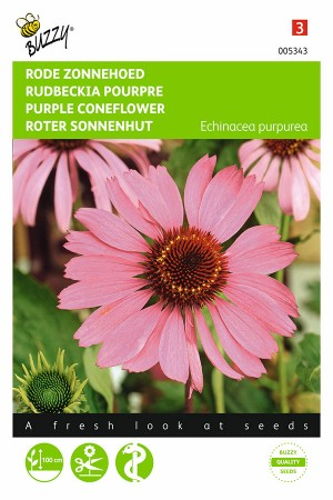 Purple Coneflower Echinacea...