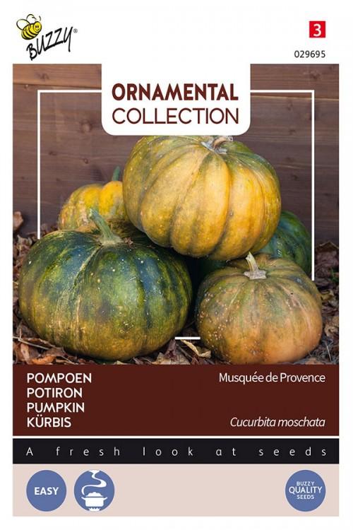 Musquee de Provence pumpkin seeds