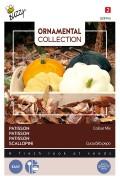 Gemengde kleuren pattison zaden