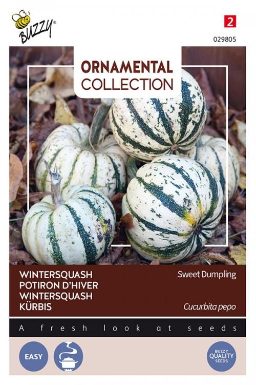 Sweet Dumpling wintersquash seeds