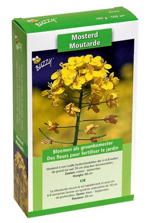 Mustard seeds - Ground cover seeds