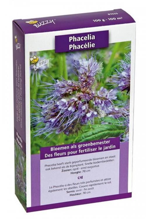 Phacelia Tanacetifolia zaden 100m2 groenbemester