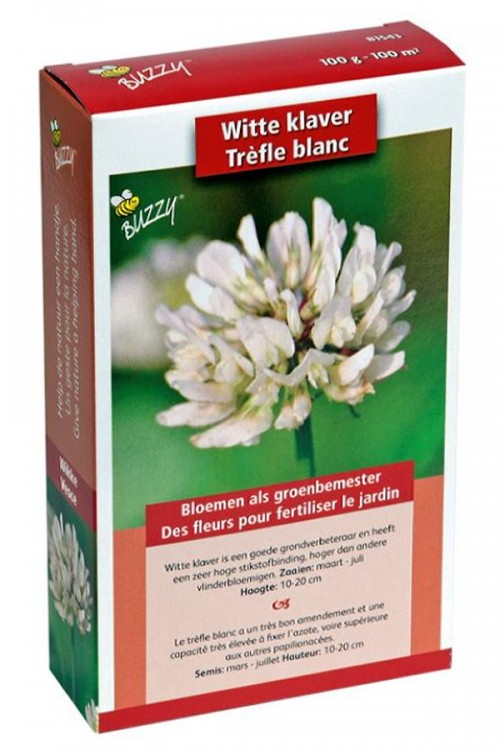 White Clover seeds 100m2 green manure
